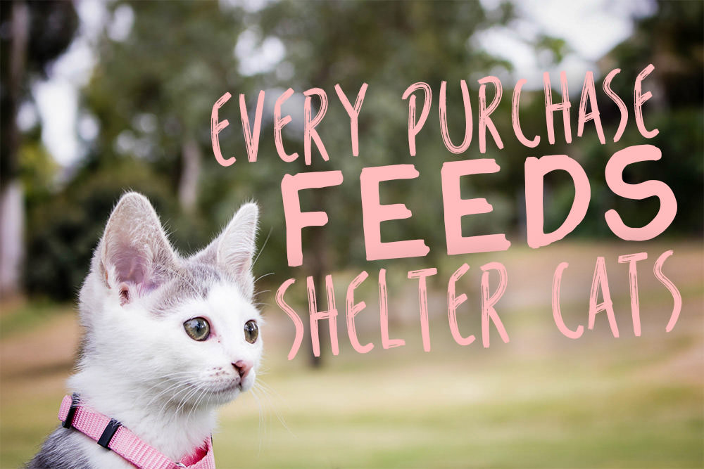 Every Purchase Feeds Shelter Cats Iheartcats Com